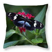 Black And Blue Butterfly Throw Pillow
