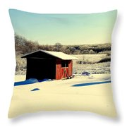 Black And White And Color Throw Pillow