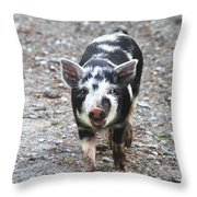 Black And White Baby Pig Throw Pillow