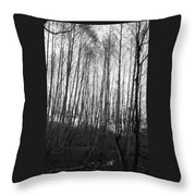 Black And White Birch Stand Throw Pillow