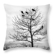 Black And White Blackbirds  Throw Pillow