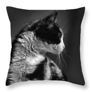 Black And White Cat In Profile  Throw Pillow