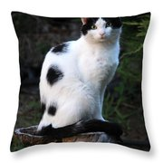 Black And White Cat On Tree Stump Throw Pillow