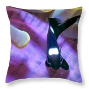 Black And White Damsels 4 Throw Pillow