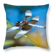 Black And White Dragonfly Throw Pillow