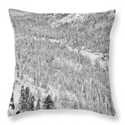 Black And White Lake Tahoe California Covered In Snow During The Winter Throw Pillow