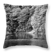Black And White Landscape Throw Pillow