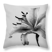 Black And White Lily Throw Pillow