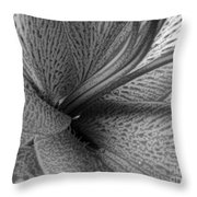 Black And White Lily Z Map L Throw Pillow