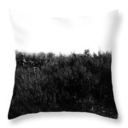 Black And White Magic V2 Throw Pillow