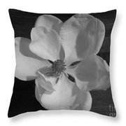 Black And White Magnolia Blossom Throw Pillow