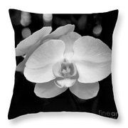 Black And White Orchid With Lights - Square Throw Pillow