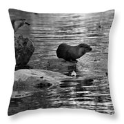 Black And White Otters In The Wild Throw Pillow