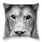 Black And White Portrait Of A Lion Throw Pillow