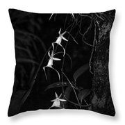 Black And White Quad Ghost Orchid Throw Pillow