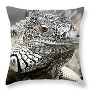 Black And White Saurian Animal Nature Iguana Throw Pillow