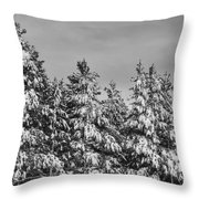 Black And White Snow Covered Trees Throw Pillow
