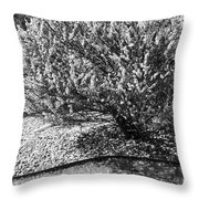 Black And White Spring Throw Pillow
