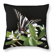 Black And White Swallowtail Square Throw Pillow