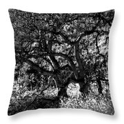 Black And White Trees Throw Pillow