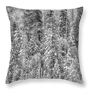 Black And White Trees In A Forest Throw Pillow
