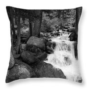 Black And White Waterfall Throw Pillow