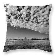 Black And White Wheat Field Throw Pillow
