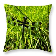 Black And White Winged Dragonfly Throw Pillow