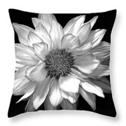Black And White Zennia Throw Pillow