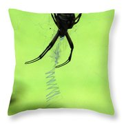 Black And Yellow Argiope - Spider Silhouette 02 Throw Pillow