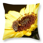 Black And Yellow Bee Beauty Throw Pillow