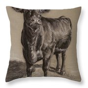 Black Angus Cow 1 Throw Pillow