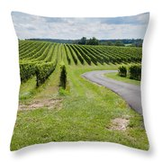 Maryland Vinyard In August Throw Pillow