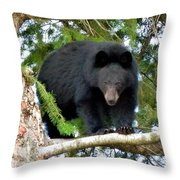 Black Bear 2 Throw Pillow