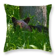 Black Bear Cub Throw Pillow