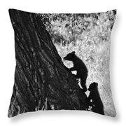 Black Bear Cubs Climbing A Tree Throw Pillow
