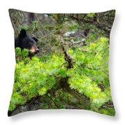 Black Bear Family In A Tree Throw Pillow