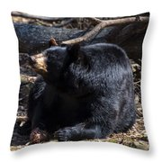 Black Bear Guarding Food Throw Pillow