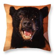 Black Bear Head Throw Pillow