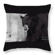 Black Bear Pose Throw Pillow
