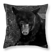 Black Bear - Scruffy - Black And White Cropped Portrait Throw Pillow