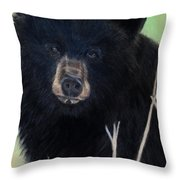 Black Bear Staredown Throw Pillow