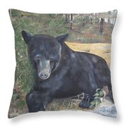 Black Bear - Wildlife Art -scruffy Throw Pillow