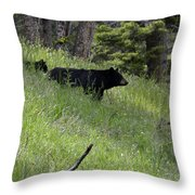 Black Bear With Cub Symetrical On Hillside Throw Pillow