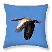 Black-bellied Whistling-duck In Flight  Throw Pillow