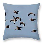 Black-bellied Whistling Ducks In Flight Throw Pillow