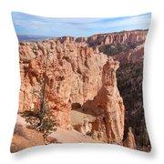 Black Birch Canyon Lookout Throw Pillow