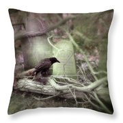Black Bird In Forgotten Graveyard Throw Pillow
