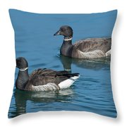 Black Brant Pair Swimming Throw Pillow