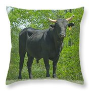 Black Bull Throw Pillow
